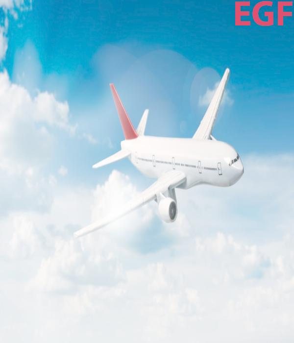 Dịch vụ vận chuyển hàng không tại Công ty Eagles Global Forwarding